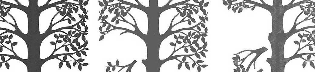 Taller Árbol Genealógico Ocho Sentidos